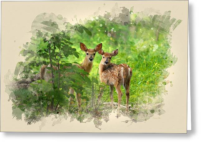 Two Deer Fawns Watercolor Art Greeting Card by Christina Rollo