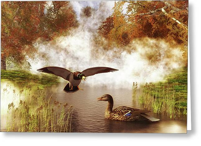 Two Ducks In A Pond Greeting Card