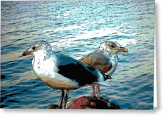 Two Gulls Greeting Card