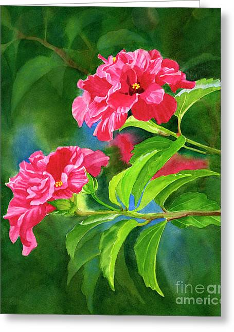 Two Hibiscus Rosa Sinensis Blossoms With Background Greeting Card by Sharon Freeman