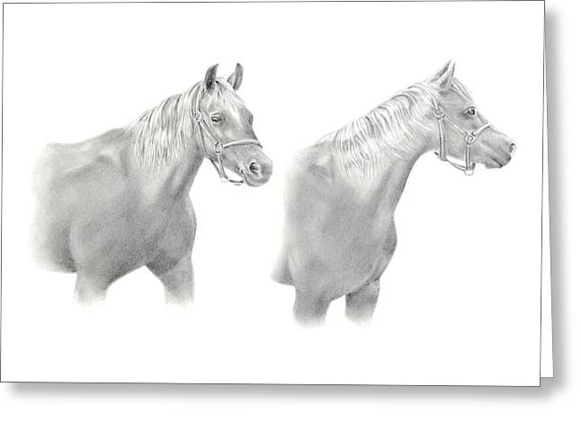 Greeting Card featuring the drawing Two Horse Study by Elizabeth Lock