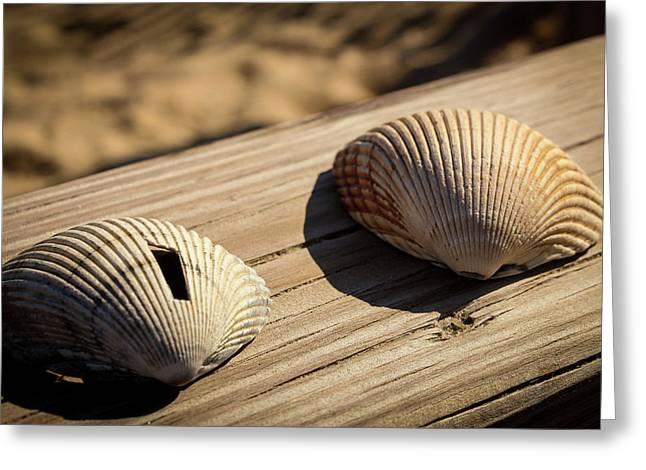Two Little Shells Greeting Card by Carolyn Ricks