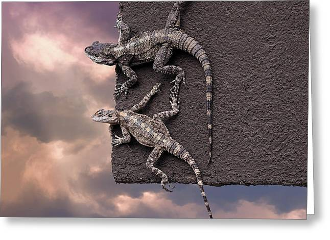 Two Lizards On The Edge Of The Roof Greeting Card