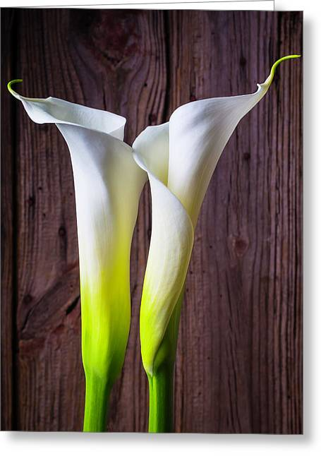 Two Lovely Calla Lilies Greeting Card
