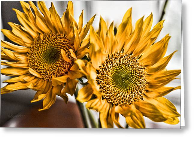 Two Of A Kind Greeting Card by Sharon Popek
