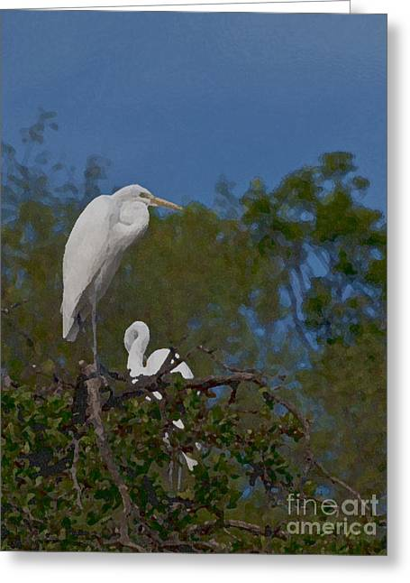 Greeting Card featuring the photograph Two On A Perch by Ken Frischkorn