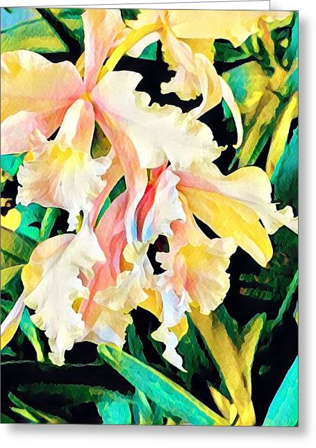 Two Orchids Pink Turquoise Greeting Card
