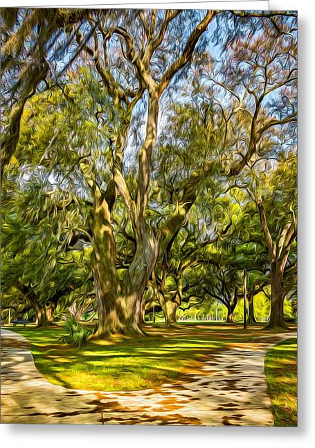 Two Paths Diverged In A Live Oak Wood 2 - Paint Greeting Card by Steve Harrington