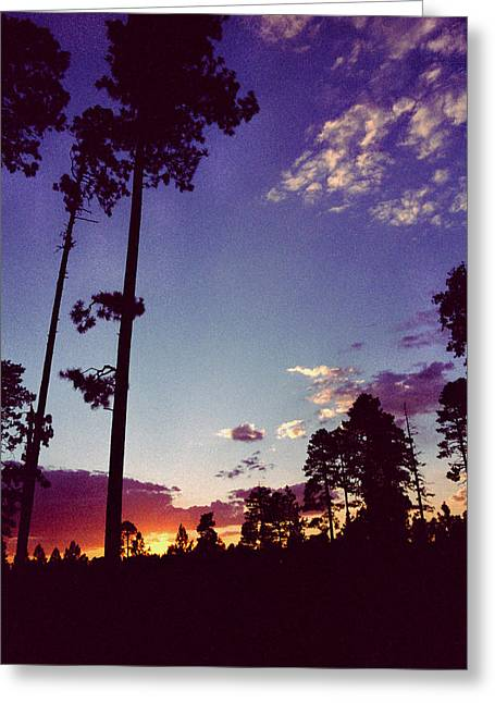 Two Pines Sunset Greeting Card