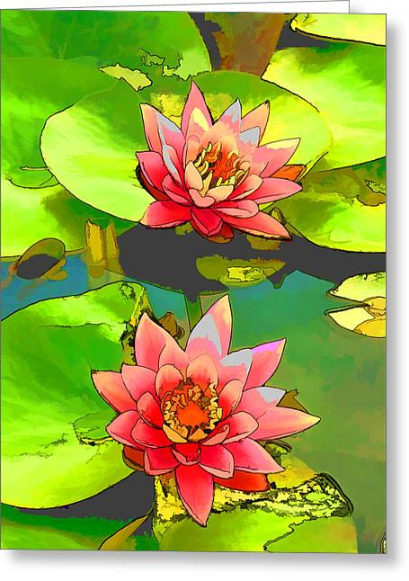Two Pink Blooming Water Lilies  Greeting Card by Lanjee Chee