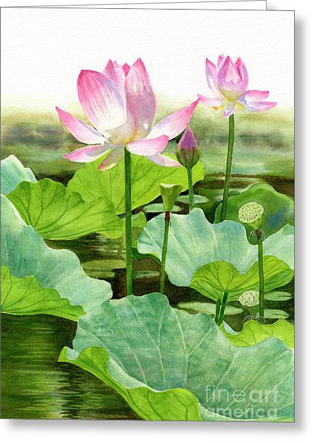 Two Pink Lotus Blossoms With Bud Greeting Card