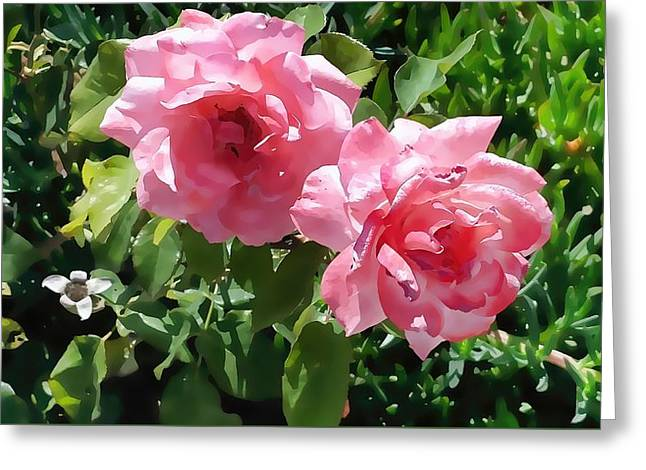 Two Pink Roses Version 1 Greeting Card