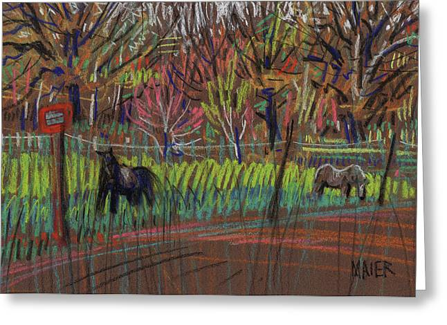 Two Ponies Greeting Card by Donald Maier