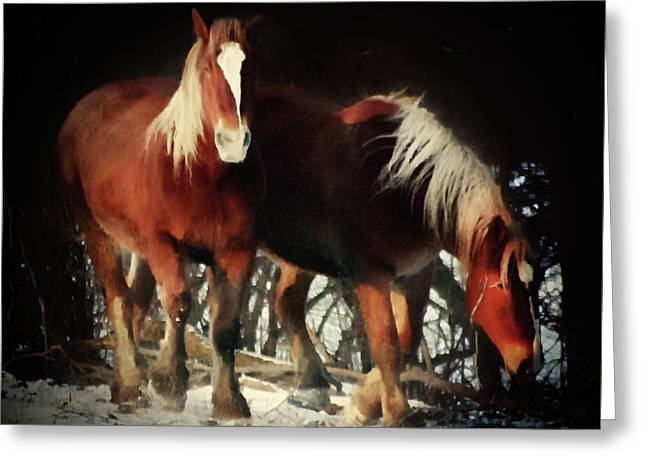 Two Red Horses  Greeting Card