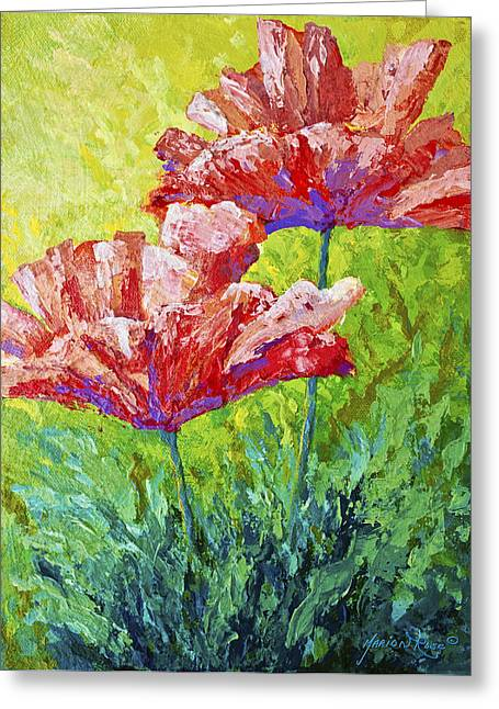 Collection Paintings Greeting Cards - Two Red Poppies Greeting Card by Marion Rose