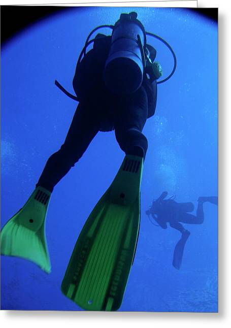 Two Scuba Divers Swimming Greeting Card by Sami Sarkis