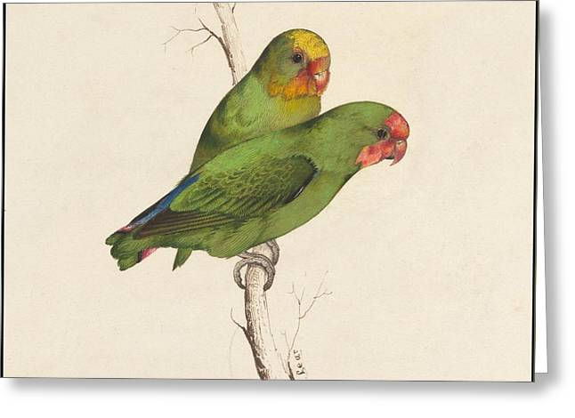 Two Small Green Birds Hand Greeting Card