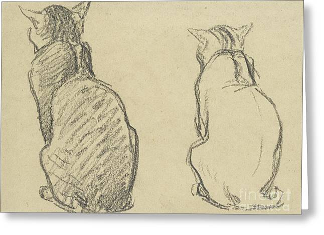 Two Studies Of A Cat Greeting Card