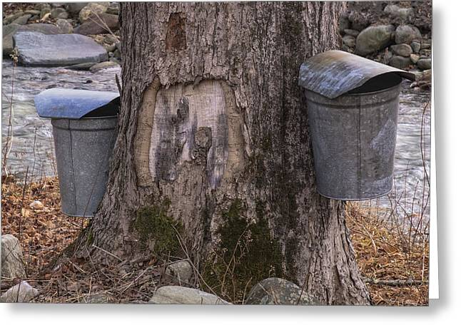 Two Syrup Buckets Greeting Card