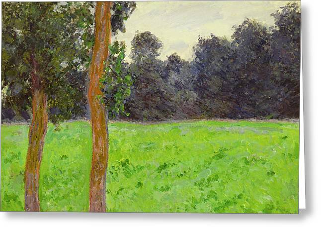 Two Trees In A Field Greeting Card by Claude Monet