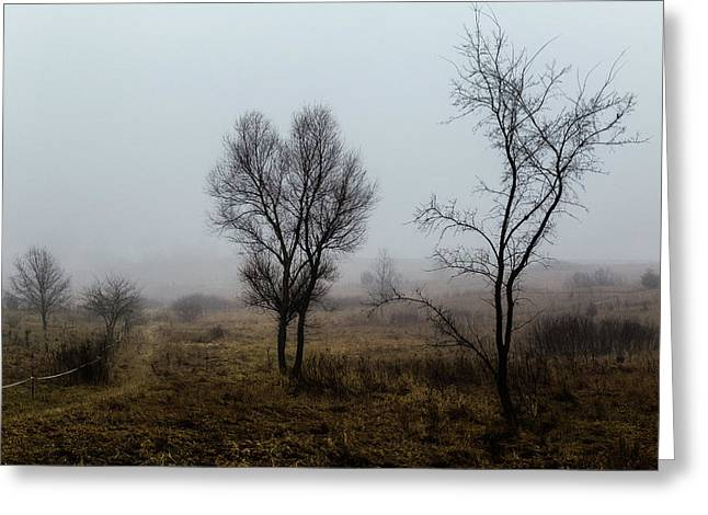 Two Trees In The Fog Greeting Card