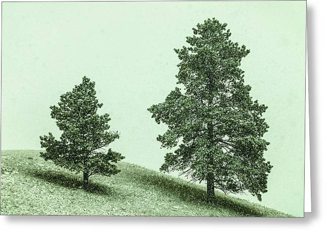 Two Trees In The Snow Greeting Card by Todd Klassy