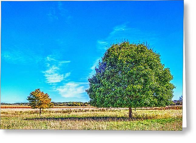 Two Trees On The Illinois Prairie Greeting Card
