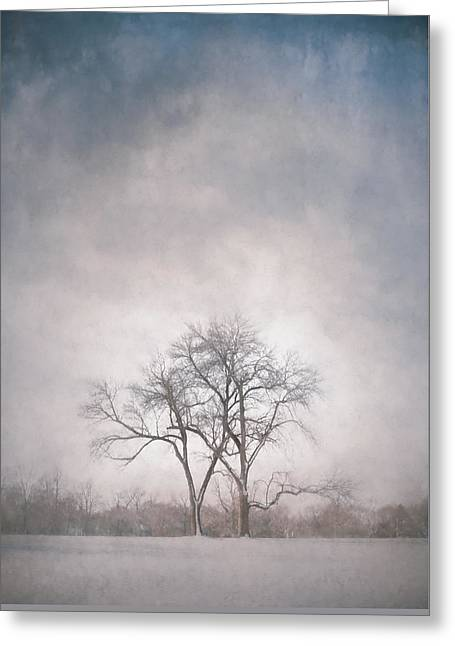 Two Trees Greeting Card by Scott Norris