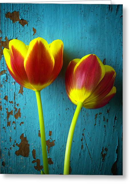 Two Tulips Against Blue Wall Greeting Card