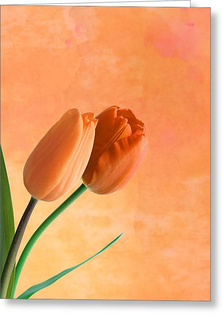 Two Tulips Greeting Card by Mark Rogan