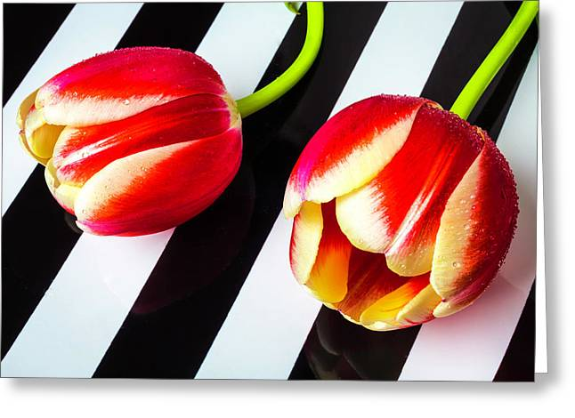 Two Tulips On Striped Plate Greeting Card