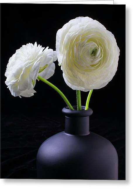 Two White Ranunculus Greeting Card