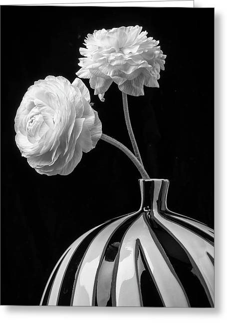 Two White Ranunculus In Vase Greeting Card by Garry Gay