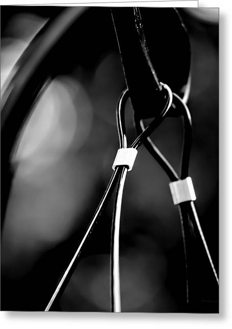 Two Wires On A Pole Greeting Card