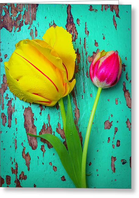 Two Yellow Red Tulips Greeting Card
