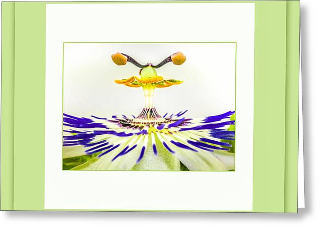 UFO Greeting Card by Mona Stut