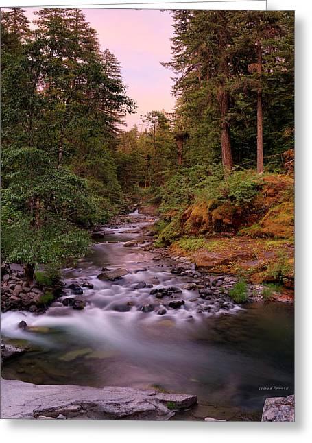 Umpqua River Sunset Greeting Card by Leland D Howard