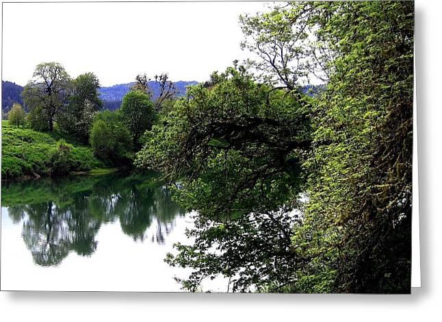 Umpqua River Greeting Card by Will Borden