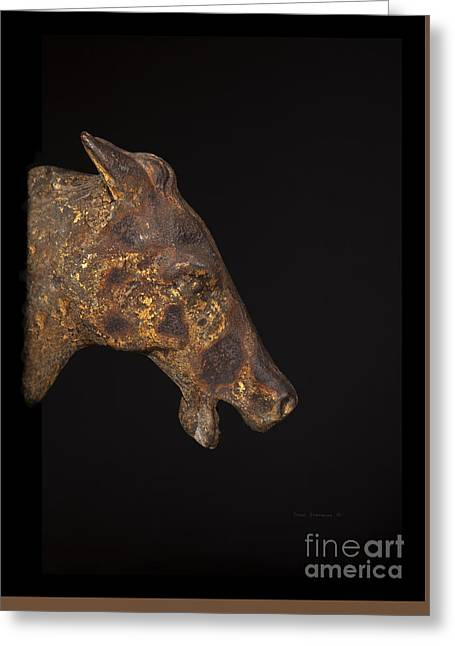 Unbridled Patina Greeting Card