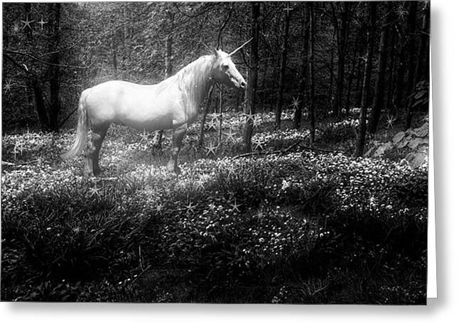 Under A Moonlit Sky  #fantasy #unicorn Greeting Card by John Edwards