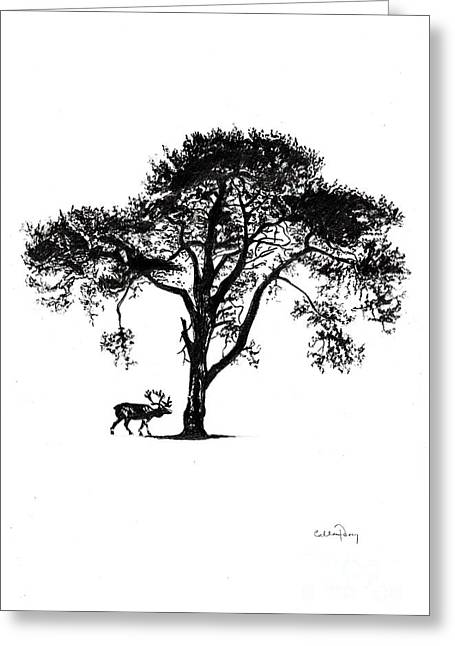 Under A Tree In Winter Greeting Card by Callan Percy