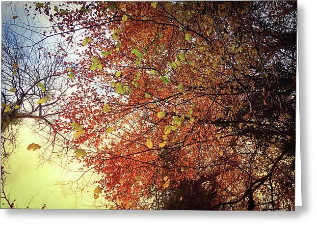 Under An Autumn Sky - No.2 Greeting Card