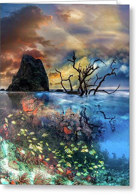 Under And Over The Reef Greeting Card