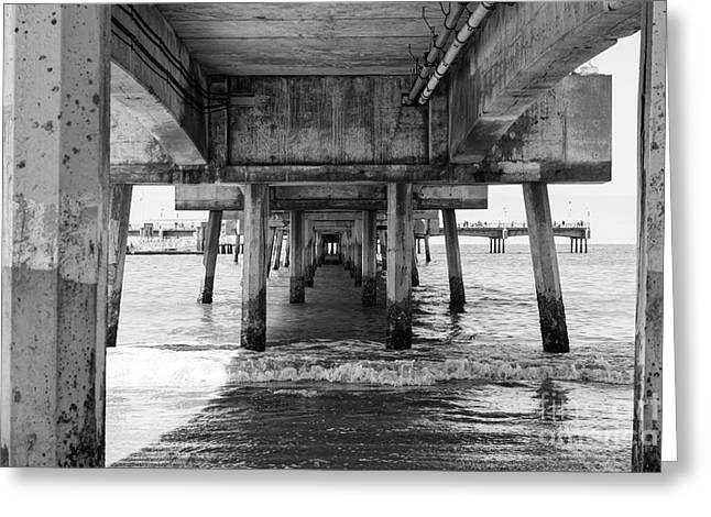 Under Belmont Veterans Memorial Pier Greeting Card