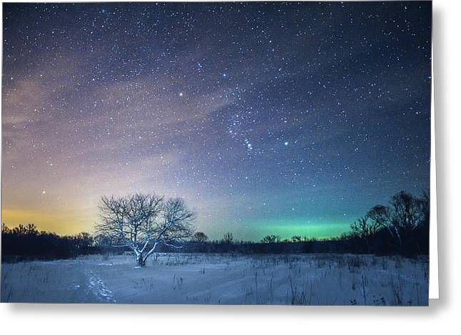 Under Orion Greeting Card by Michael Kosachyov