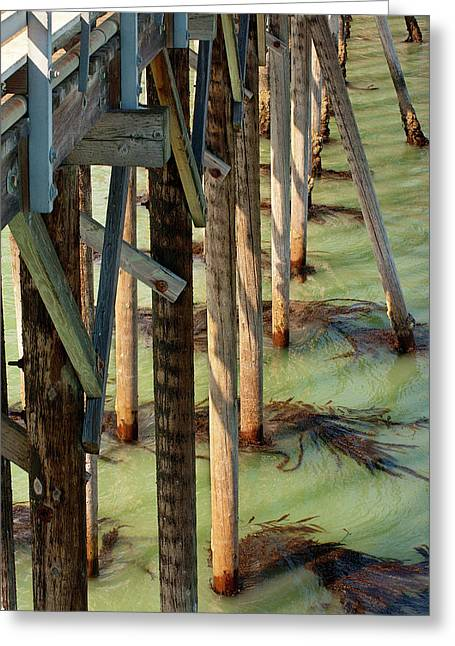 Greeting Card featuring the photograph Under San Simeon Pier by Art Block Collections