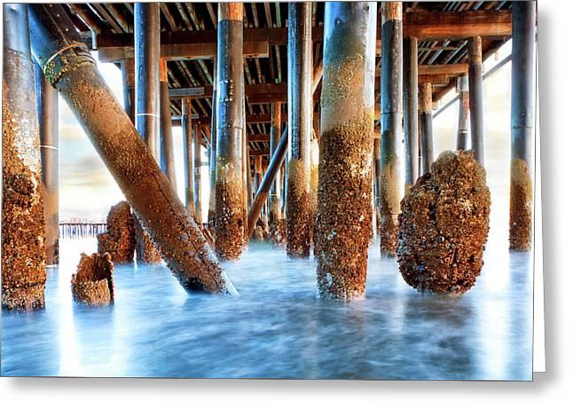 Under Stearn's Wharf In Santa Barbara California Greeting Card by Susan Schmitz