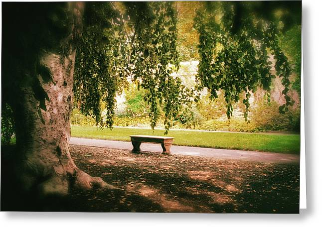 Under The Beech Tree Greeting Card by Jessica Jenney