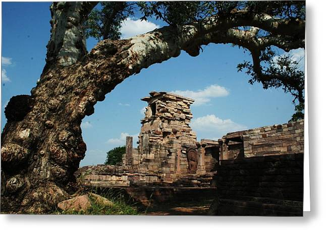 Under The Bodhi Tree Greeting Card by Mohammed Nasir