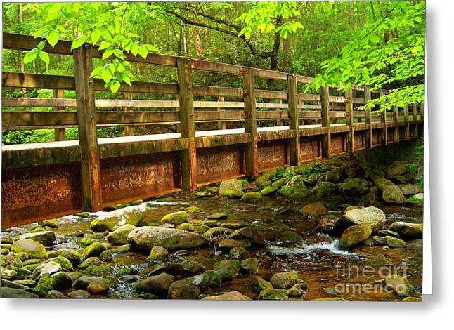Under The Bridge Greeting Card by Southern Photo